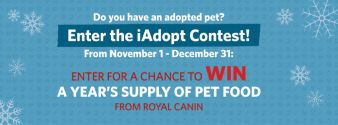 IAdopt For The Holidays Contest Sweepstakes