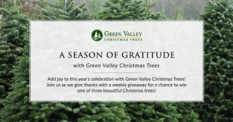 Green Valley Christmas Trees Sweepstakes