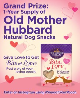 Old Mother Hubbard Smooch Your Pooch Sweepstakes