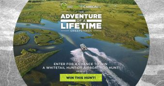 Carbon TV Sweepstakes