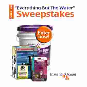 Instant Ocean Sweepstakes