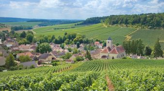 Destination Champagne and Burgundy Sweepstakes Sweepstakes