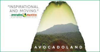 The Avocados from Mexico Sweepstakes
