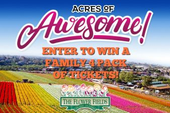101 Things To Do San Diego Sweepstakes