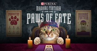 Purina · Paws of Fate Giveaway Sweepstakes