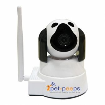 Modern Dog · PetCams Giveaway Sweepstakes