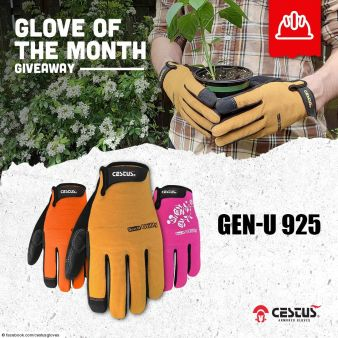 Cestus Armored Gloves Sweepstakes