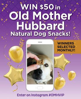 Old Mother Hubbard Sweepstakes