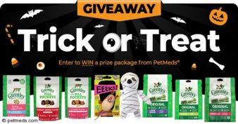 1800PetMeds® · Tricks For Treats Sweepstakes Sweepstakes