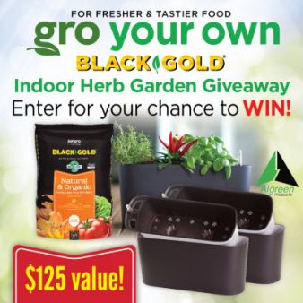 Black Gold Sweepstakes