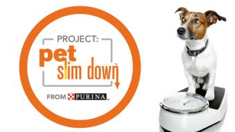 Project Pet Slim Down Sweepstakes Sweepstakes