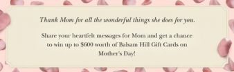 Balsam Hill Sweepstakes